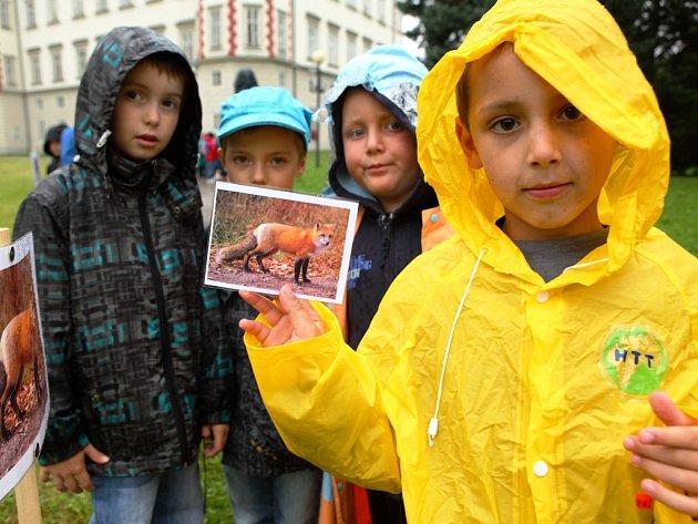 LOUKA PLNÁ DĚTÍ. Akce Správy KRNAP se zúčastnilo třináct mateřských školek z regionu.