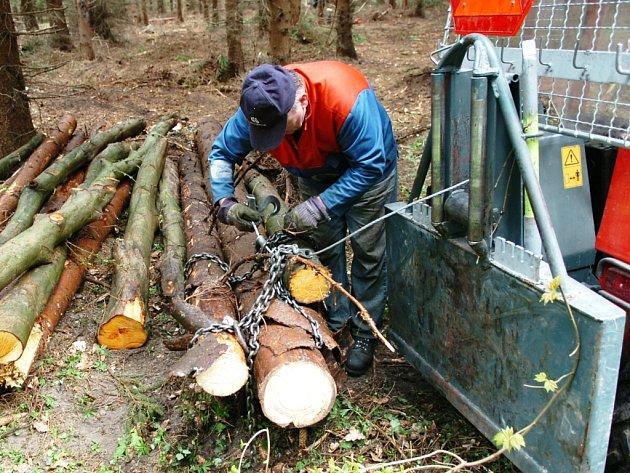 LESNÍ PRÁCE PO ORKÁNU EMMA v těchto dnech intenzivně pokračují. V revíru Podhůří bylo dosud vytěženo pět tisíc kubíků poškozeného dřeva z celkového počtu sedmi tisíc.