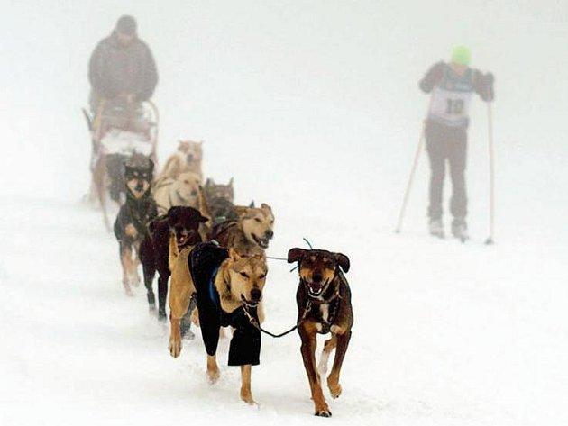 PŘESUNOUT START Ledové jízdy na sjezdovku v Dolním Dvoře se ukázalo jako velmi dobrý tah, který přilákal i množství diváků. Na hřebenech se pak musheři potýkali s rozmary horského počasí.