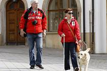 POHYB psů určuje nová vyhláška od července.