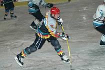 Ilustrační foto - hokej