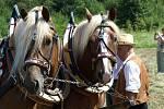 Slavnosti koní, řemesel a historie v Kuksu 2013