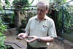 PAVEL MOUCHA, hlavní zoolog ze Zoo Dvůr Králové, vyjednává přesuny zvířat mezi zahradami. Na snímku s varanem.
