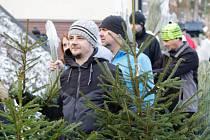 Bitva o vánoční stromky z hor