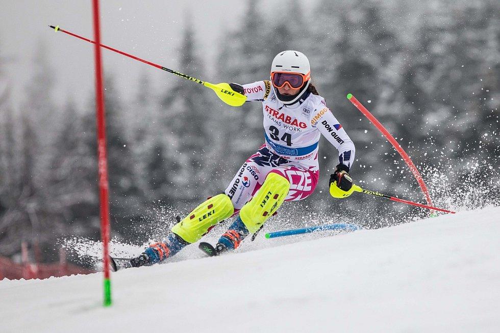 Gabriela Capová, Světový pohár v lyžování ve Špindlerově Mlýně
