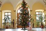 Návštěvníky Městského úřadu ve Vrchlabí vítá ve vstupní hale krásný vánoční strom.