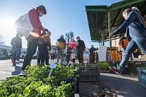 V sobotu mohli lidé v Trutnově znovu zavítat na farmářské trhy v Trutnově. V Poříčí se konají každou sobotu dopoledne.