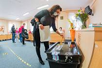 Krajské a senátní volby 2020 v Mladých Bukách.