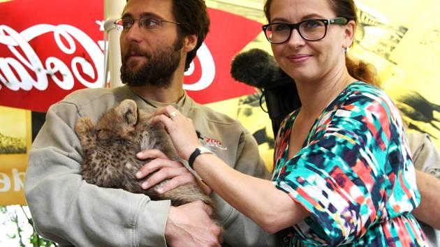 Gepardy v zoo pokřtil slavný pár
