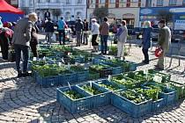 Farmářské a všeobecné trhy na náměstí T. G. Masaryka ve Dvoře Králové nad Labem.