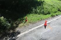 Hledají se svědkové střetu chodce s automobilem