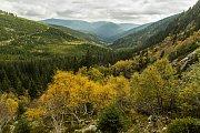 V Labském dole v Krkonoších zřídil hrabě Jan Nepomuk Harrach v roce 1904 první přírodní rezervaci.