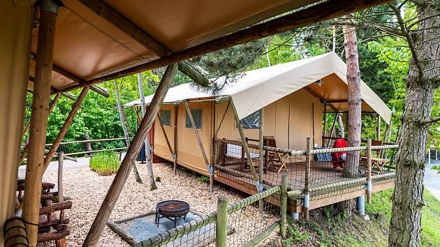 Safari kemp ve Dvoře Králové nad Labem.