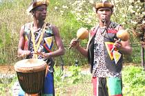 Africký žár rozhicoval lidi v zoo