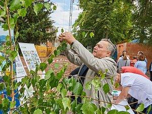 Glajcha s přáními. Při setkání vedení města, stavební společnosti BAK a zástupců SVČ k dokončení hrubé staby areálu Na Nivách využil možnost zavěsit přání na stromek i starosta Ivan Adamec.