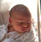 ŠIMON ČEPELKA se narodil 13. listopadu v 5.47 hodin rodičům Lucii a Janovi. Vážil 3,66 kg a měřil 50cm. Spolu se sestřičkou Eliškou bydlí v Trutnově.