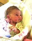 ELLA STAŇKOVÁ se narodila 26. prosince v 19.12 hodin rodičům Sáře a Adamovi. Vážila 3,41 kg a měřila 51cm. Rodina bydlí ve Vrchlabí.