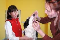 Nová veterinární klinika v Trutnově