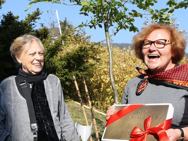 Vysazení stromu pro Olgu Havlovou u obchodní akademie v Janských Lázních.