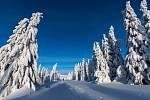 Víkendová sněhová nálož v okolí Špindlerovky.