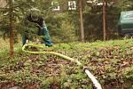 Správa Krkonošského národního parku obnovuje trdliště, kde se rozmnožují obojživelníci.