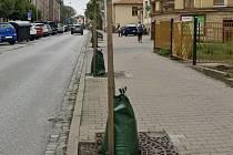 Stromům v Trutnově pomohou nově vaky s vodou.