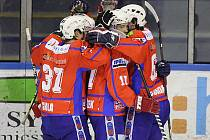 Hokejisté Třebíče se radují z branky.