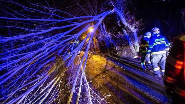 Tento týden ve středu řešily hasičské jednotky na Trutnovsku dvacet případů kvůli silnému větru, nejčastěji odstraňovali popadané stromy. V neděli a pondělí budou ve zvýšené pohotovosti.