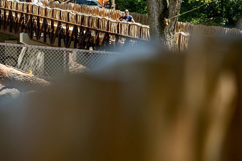 Safari Park Dvůr Králové otevřel novou cestu podél Jezera hrochů, nahradila 50 let starý most.