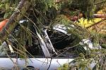 V Trutnově Poříčí spadly stromy na tři auta.