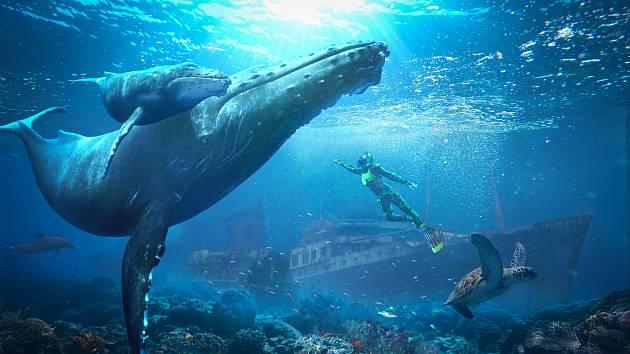 Ze sjezdovky rovnou do oceánu. Vodní virtuální realita zavede návštěvníky aquaparku do působivého prostředí podmořského světa.