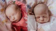 KLÁRKA A ZUZANKA STAŇKOVY se narodily Kristýně Soukupové a Štěpánu Staňkovi 9. dubna v 6.30 hodin. Klárka vážila 2,79 kg a měřila 48 cm, Zuzanka měřila 3,035 kg a měřila 47 cm. Doma v Sekerkových Loučkách už čeká i sestřička Anna.