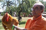 Jaroslav Balcar z Libňatova se věnuje od roku 1974 chovu plymutek žlutých, s jejich kohoutem zabodoval v sobotu 3. místem v Kohoutově. Doma má i kolumbijské plemeno plymutek bílých.
