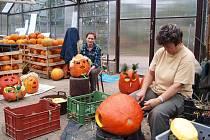 Týden duchů v královédvorské zoo - pracovníci zahrady připravují výzdobu