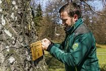Pracovníci Správy KRNAP umístili na 23 stromů v zámeckém parku ve Vrchlabí informační cedulky.