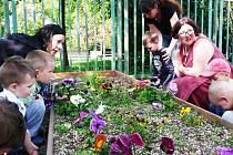 U maršovského Doteku vznikne Zelená oáza. Poslouží i výuce