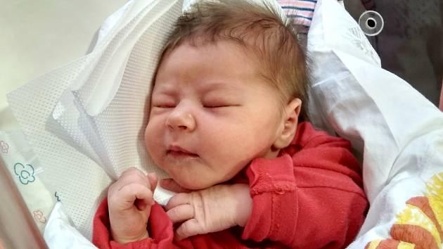 KAROLÍNA ADÁMKOVÁ se narodila 12. prosince v 15.33 hodin rodičům Ivetě a Janovi. Vážila 3,89 kg a měřila 52 cm. Rodina je ze Zlaté Olešnice.