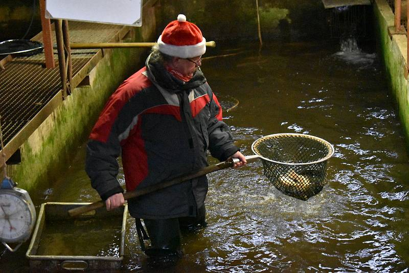 Trutnovští rybáři zahájili vánoční prodej ryb v líhni v Petříkovicích.