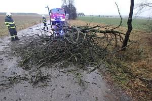 Hasičské jednotky zasahovaly ve středu nejčastěji kvůli popadaným stromům.
