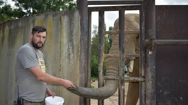 Zoolog safari parku Jiří Hrubý se narodil v roce 1980 ve Dvoře Králové nad Labem. V patnácti letech poprvé nastoupil do zoo na brigádu na oddělení výživy. Jako zoolog pracuje sedmnáct let