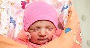 MARKÉTKA se narodila 12. července v 10.42 hodin. S rodiči bude bydlet ve Skuhrově.