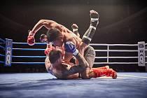 Z galavečera bojových sportů v Uffu 2018.