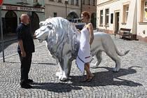 LEV V TRUTNOVĚ. Sochař Michal Gabriel jako autor osobně dohlédl na instalaci lva z nerezu před městskou galerií, s ředitelkou galerie Lucií Pangrácovou.