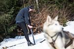 Závody psích spřežení a taženého běžkaře na hřebenech Krkonoše nazývané Ledová Jízda