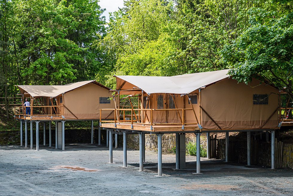 V Safari kempu ve Dvoře Králové nad Labem vznikají tři obrovské glampingové stany, které poskytnou ubytování pro osm osob.