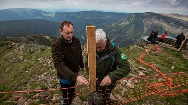 Správa KRNAP instalovala na Sněžce nové zábrany