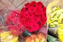 Nabídka růží.