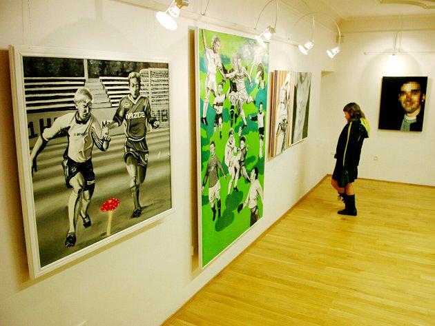 Výstava děl Davida Kubiny v Trutnově