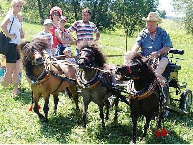 Slavnosti koní