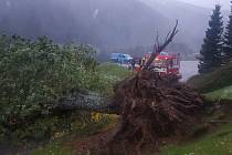 Během 24 hodin špindlerovští hasiči odklidili nebo zlikvidovali ve Špindlerově Mlýně a okolí 29 stromů.